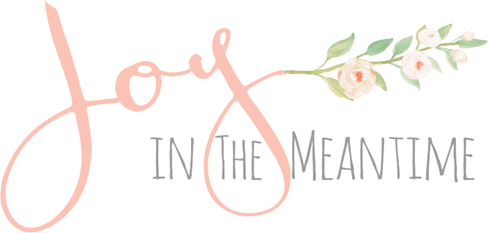 Joy in the Meantime logo